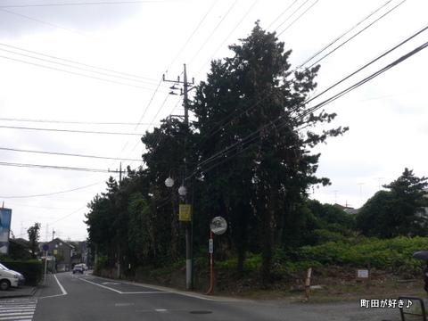 2009092203 小川・金森を歩く