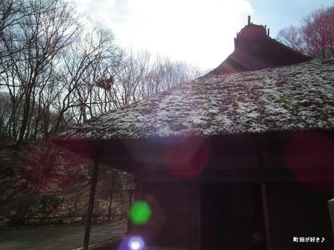 2012021838雪残る薬師池公園