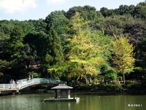 2010102339薬師池公園