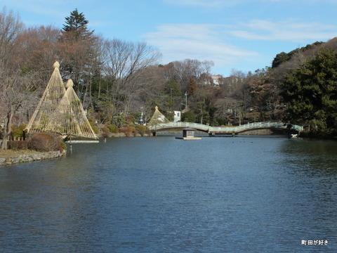 2012122403冬の薬師池公園