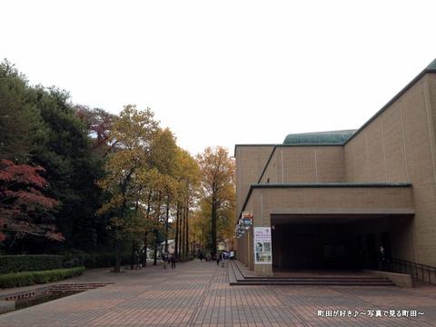 2015103103色付く町田市立国際版画美術館