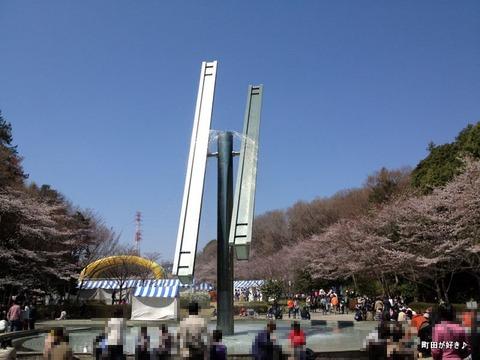 20120408093芹ヶ谷公園さくらまつり