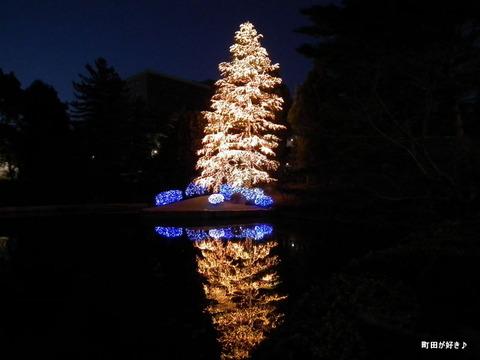 20101225021玉川学園クリスマスツリー