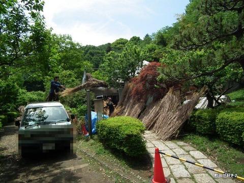 20110514059茅葺屋根の葺き替え@薬師池公園
