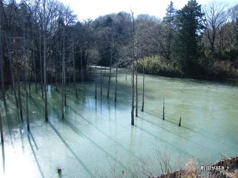 20100117062小山内裏公園の大田切池