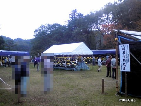 20111105121第18回町田市菊花展