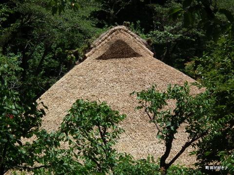 20110723066薬師池公園・旧永井家住宅の茅葺屋根