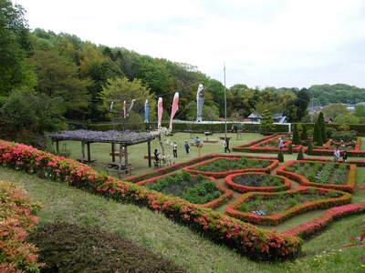 20090418051.jpg 町田ぼたん園