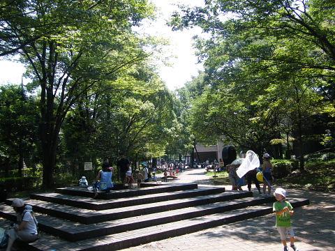 2009081620.jpg 芹ヶ谷公園 町田市