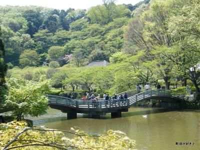 20100425116薬師池公園