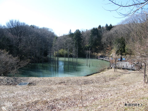 20100117056小山内裏公園の大田切池