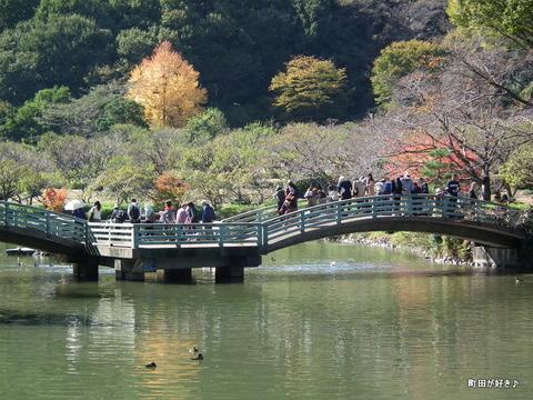 2010110360秋の薬師池公園