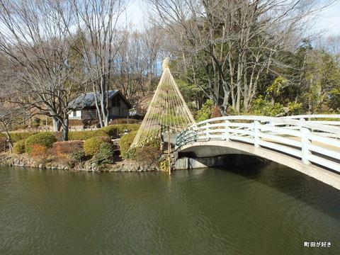2012122416冬の薬師池公園
