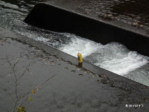 20111023018恩田川