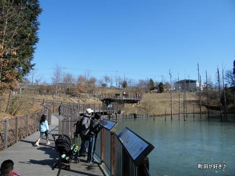 20100117074小山内裏公園の大田切池