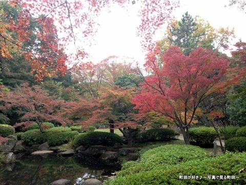 2015112202『芹ヶ谷公園』の風景