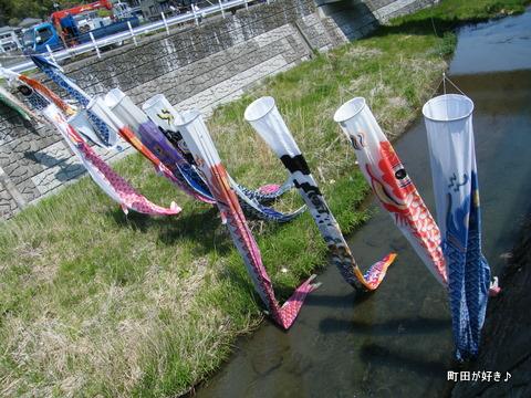 20100425032平成22年第7回鶴見川泳げ鯉のぼり
