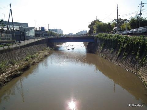 20101106122境川鶴間橋