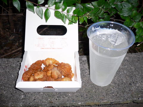 20090725137.jpg 2009年木曽団地花火大会