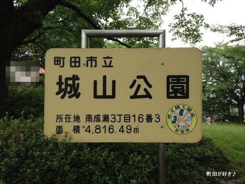 2012062301成瀬城跡