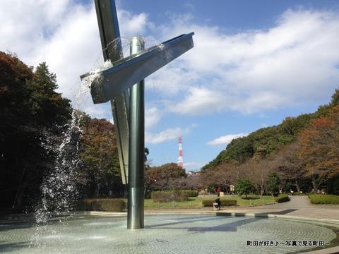 2014110310秋の芹ヶ谷公園の風景