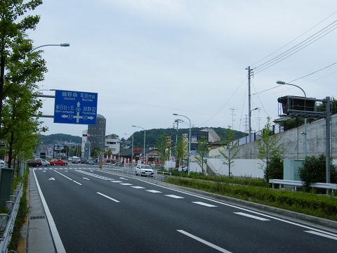 20080524143.jpg