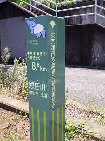 2009081602.jpg 恩田川 町田市成瀬