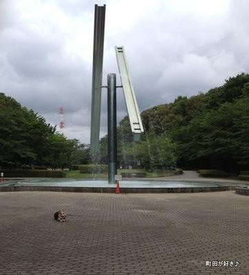 2012070804b水の芹ヶ谷公園