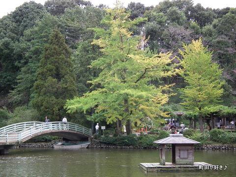 2011092316薬師池公園