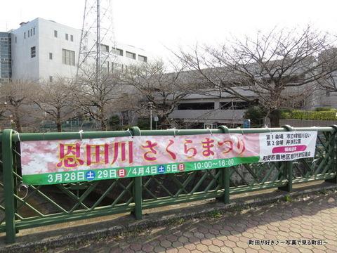 2015032203恩田川さくらまつり