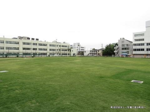 2014050661芝生広場「町田シバヒロ」