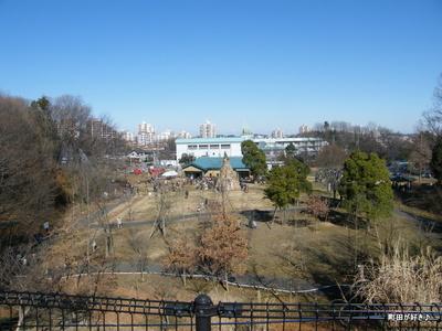 20100117019第8回小山内裏公園どんど焼き