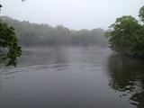 辺り一面濃霧