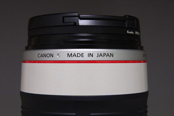 Canon EF28-300mm F3.5-5.6 IS USM