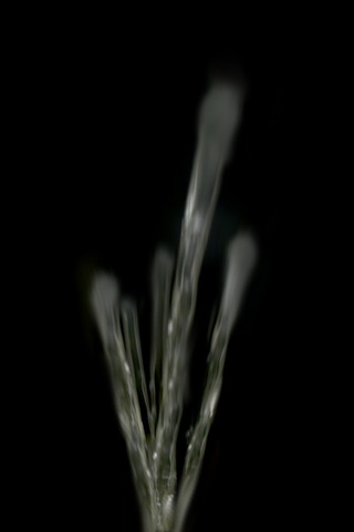 フリー画像 水しぶき