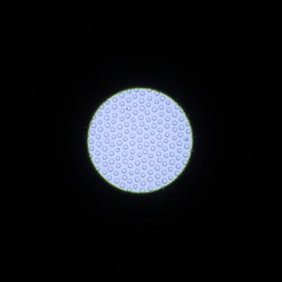 光源5m フォーカス1m フィルター:ポートレートソフト