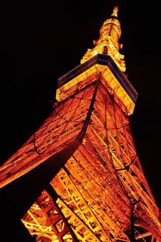 夜の東京タワーを見上げる