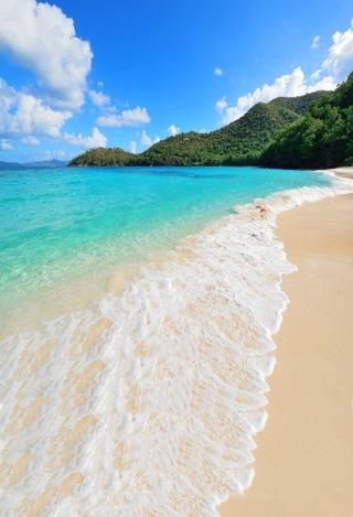 砂浜の背景布