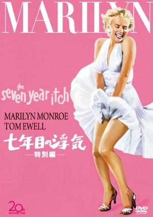 DVD「七年目の浮気」