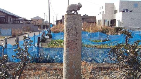 4静岡県御前崎の猫塚の写真