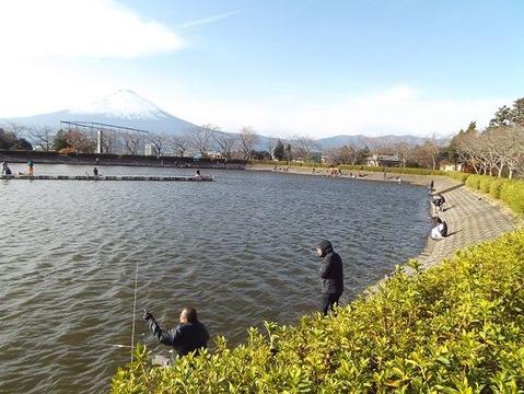 26御殿場市で紅葉狩りと富士山写真 (3)