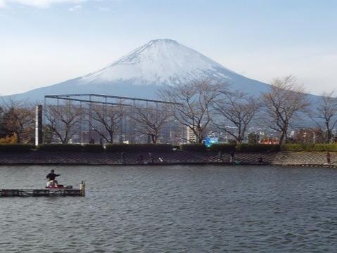 26御殿場市で紅葉狩りと富士山写真 (5)