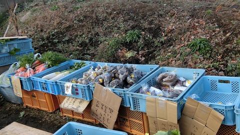 年末年始の無人販売所で野菜 2019(1)