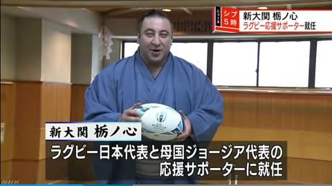 Screenshot-2018-6-1 大関昇進の栃ノ心