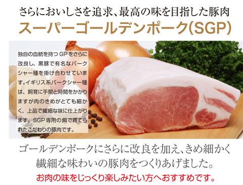 me_sgp01