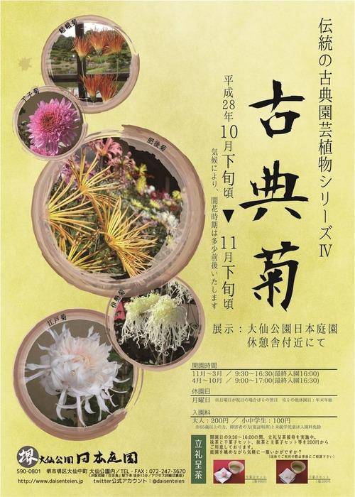 2016古典菊展チラシ表横1000
