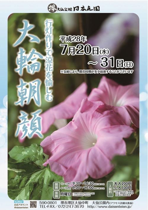 2016大輪朝顔展A4チラシ表横1000