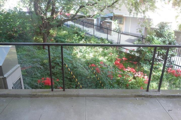 館庭には住民とかつての館長が協働丹精した花が咲くDSC04659
