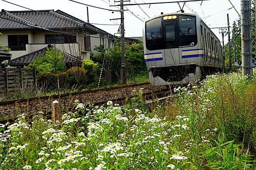 2006横須賀線北鎌倉付近