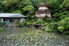 110524光明寺庭園2